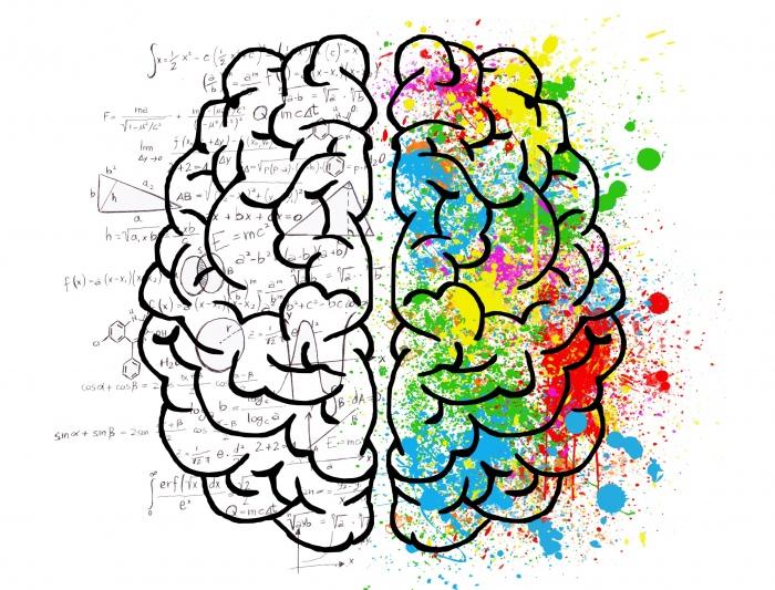 人脑可分「表意识头脑」与「无意识头脑」