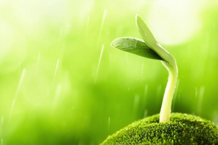 能量与灵性—舒眠减压、能量转化 研习课程