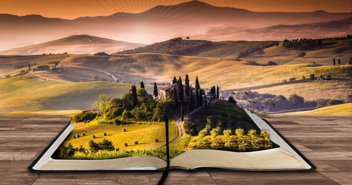 生命本體五種核心狀態:活在當下、內在和平、愛、無差別、順暢感。