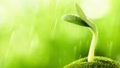 能量与灵性 – 舒眠减压、能量转化 研习课程