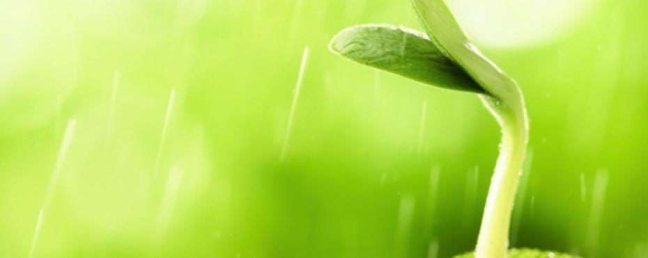 能量與靈性 – 舒眠減壓、能量轉化 研習課程